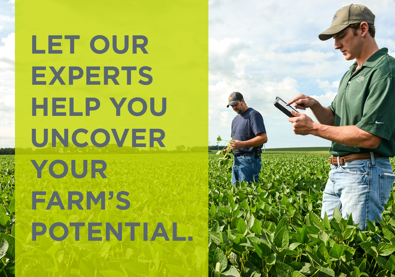 Let our experts help you uncover your farm's potential